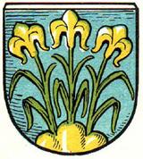 Stadtwappen bis 1910